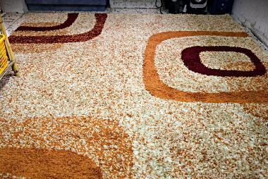 Our new rug carpet mat